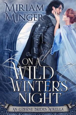 On A Wild Winter's Night